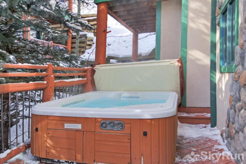 Dogwood Lodge Private outdoor hot tub!
