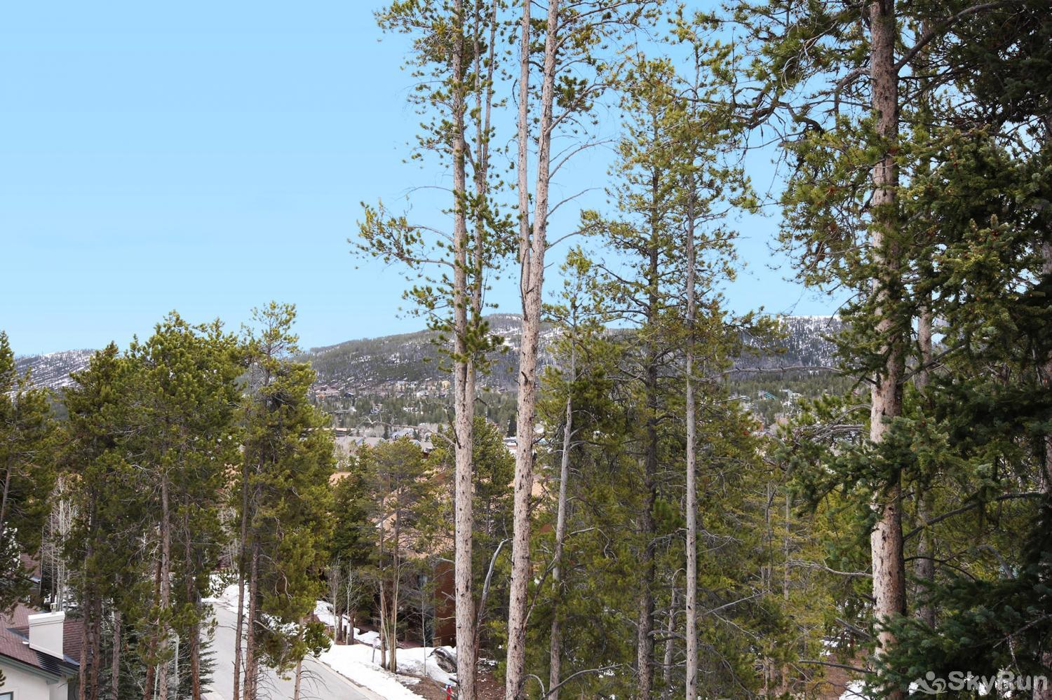 Elk Ridge 406 Stunning mountain views!