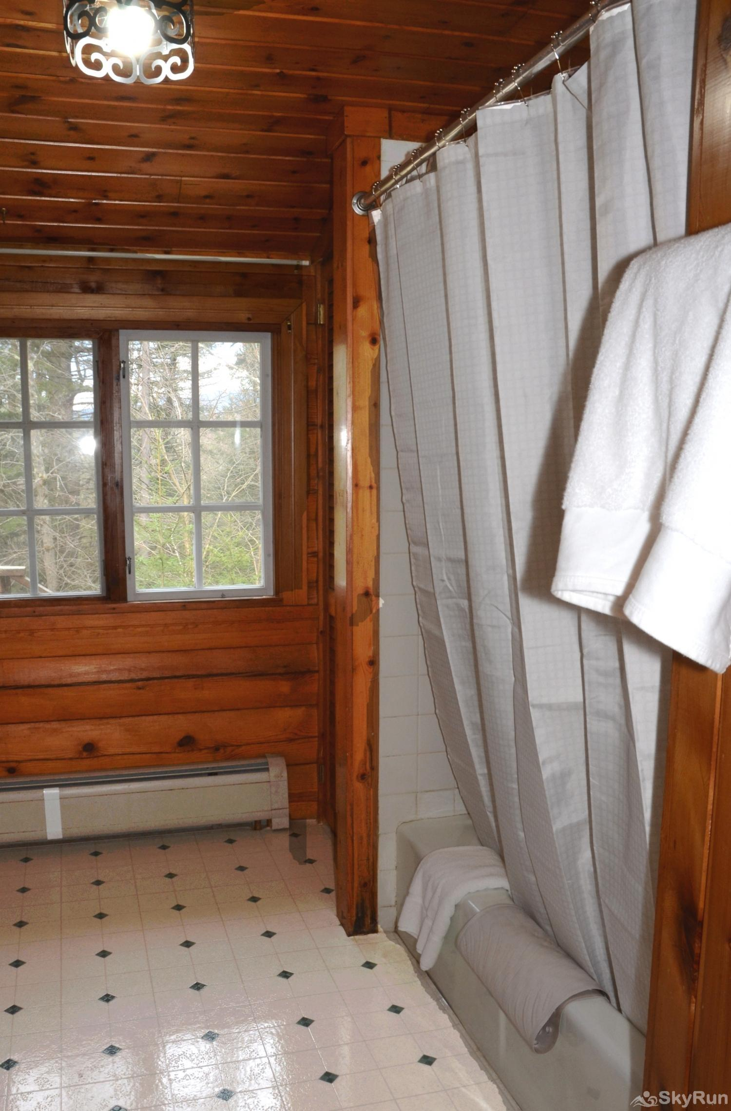 Norwegian Lane House Full bathroom