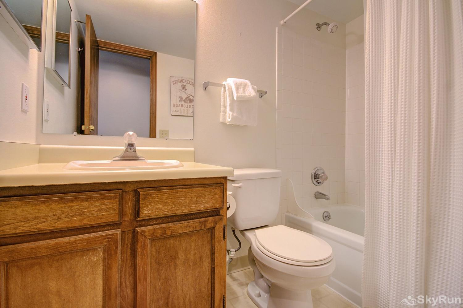 Tyra Summit A2F Queen master ensuite bath with shower/tub combo