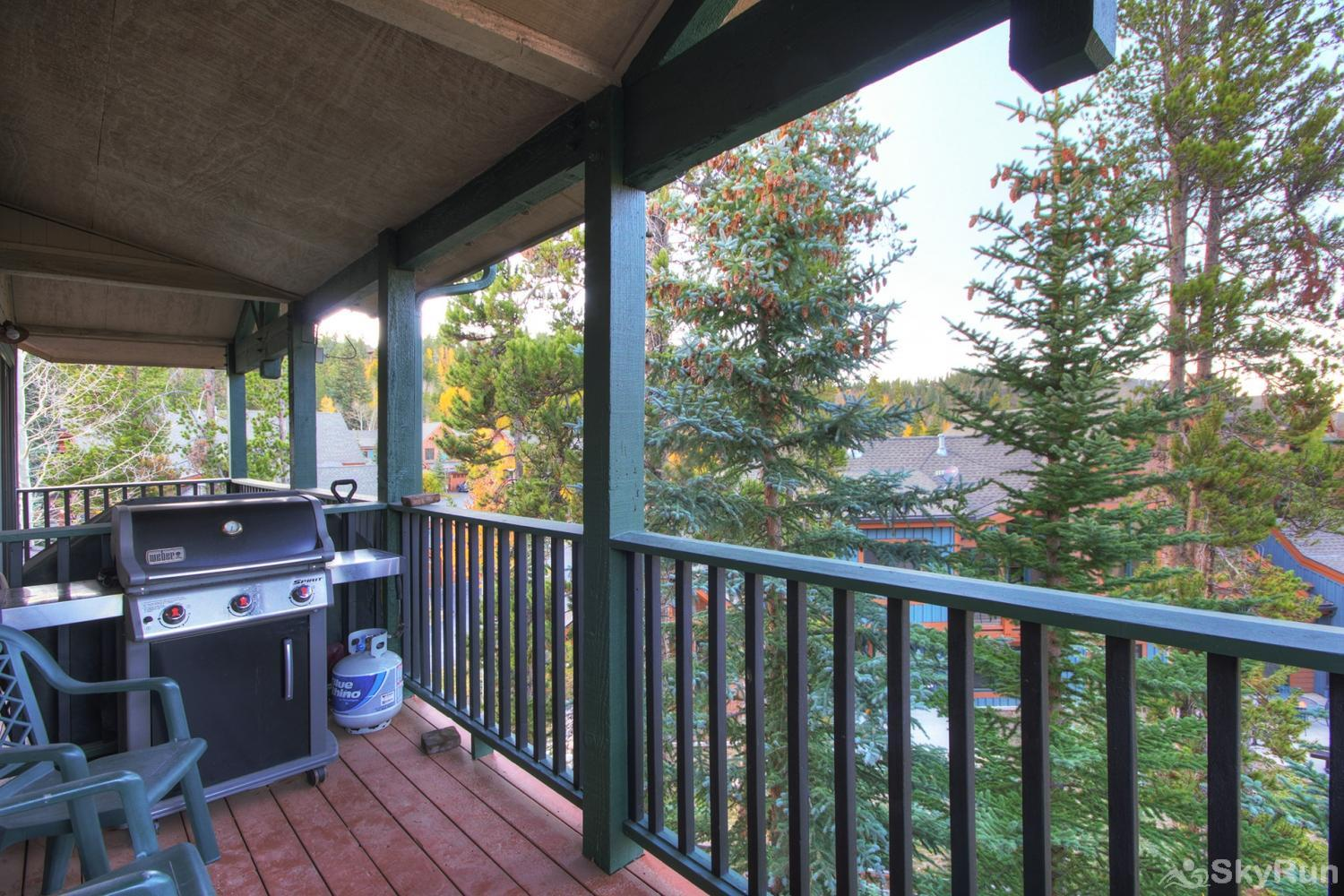 Twin Elk Lodge D16 Private balcony with propane bbq