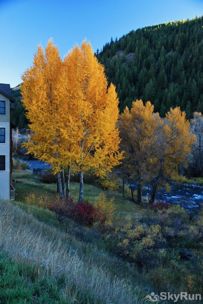 Canyon Run Townhome Mountain Modern Living Changing Leaves