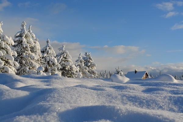 Winter Knowledge: What To Know When Heading Into The Backcountry